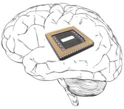 computerbrain